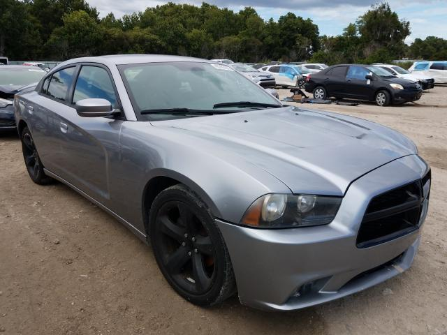 Vehiculos salvage en venta de Copart Riverview, FL: 2014 Dodge Charger SX