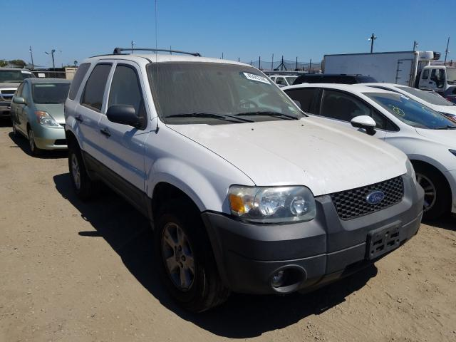 Ford Escape XLT salvage cars for sale: 2006 Ford Escape XLT