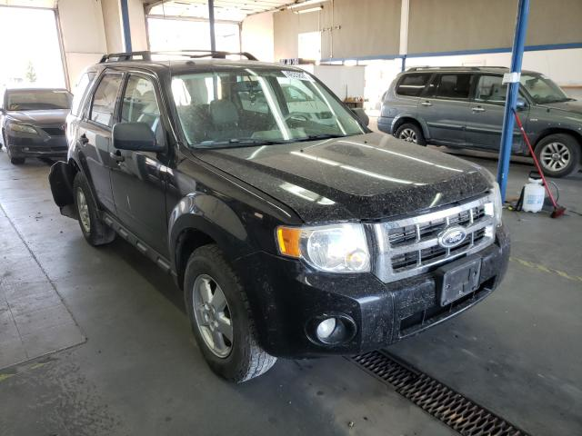 Salvage cars for sale from Copart Pasco, WA: 2010 Ford Escape XLT