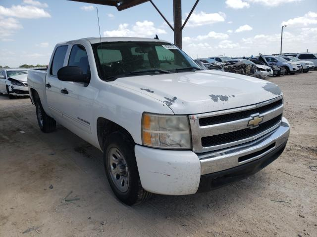 Salvage cars for sale from Copart Temple, TX: 2010 Chevrolet Silverado