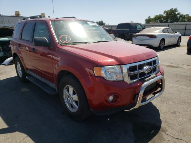 Ford Escape XLT salvage cars for sale: 2011 Ford Escape XLT