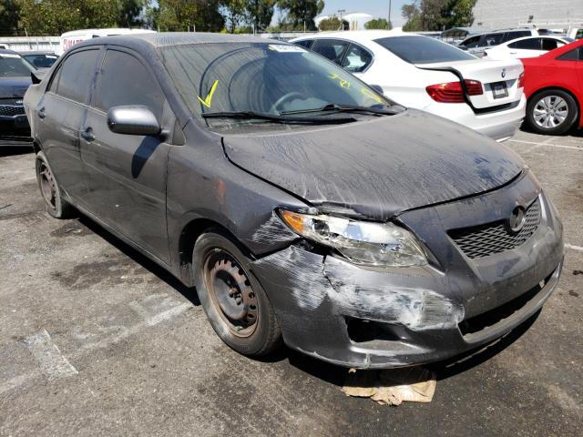 Salvage cars for sale from Copart Rancho Cucamonga, CA: 2009 Toyota Corolla BA