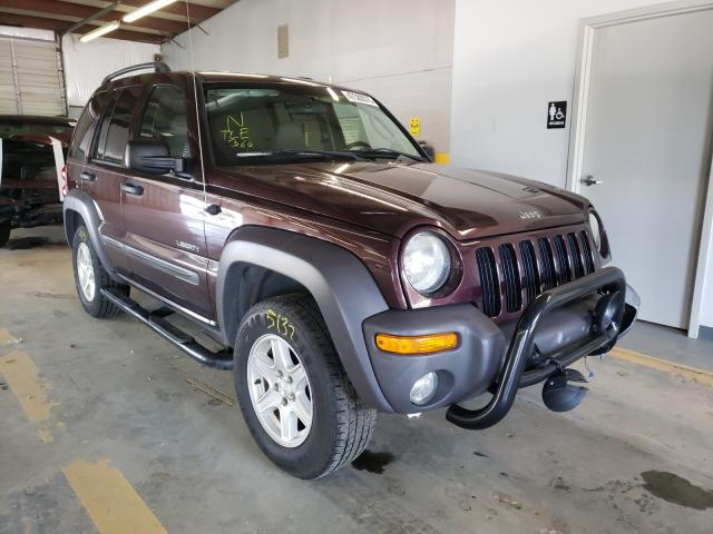 Jeep Liberty salvage cars for sale: 2004 Jeep Liberty