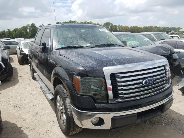 1FTEW1C83AFB09496-2010-ford-f-150