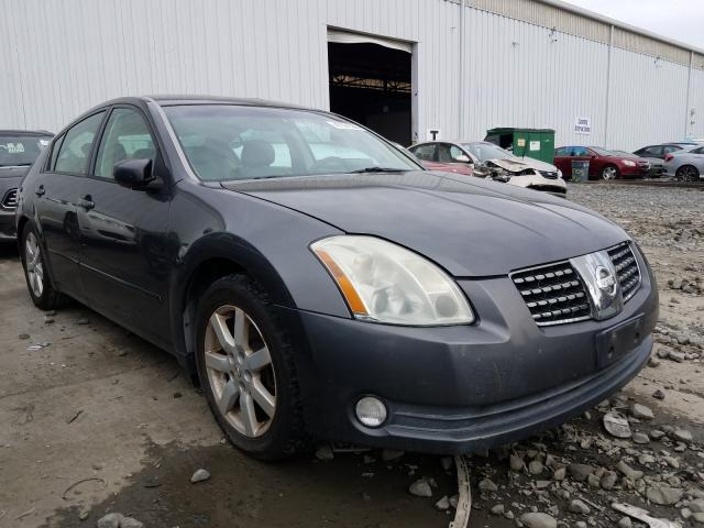 Salvage cars for sale from Copart Windsor, NJ: 2004 Nissan Maxima SE