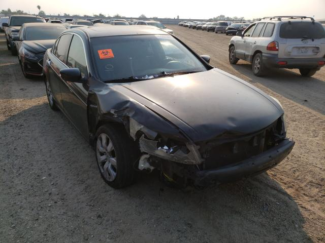 Salvage cars for sale from Copart Bakersfield, CA: 2008 Honda Accord EXL