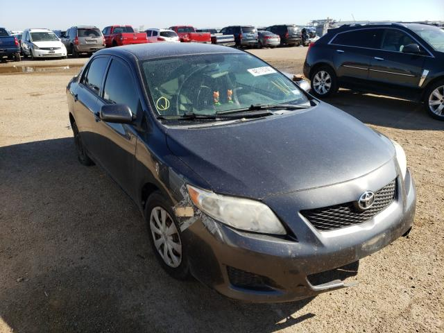 Salvage cars for sale from Copart Amarillo, TX: 2010 Toyota Corolla BA