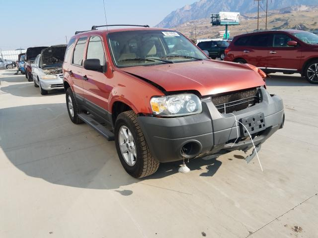 Ford Escape XLT salvage cars for sale: 2007 Ford Escape XLT