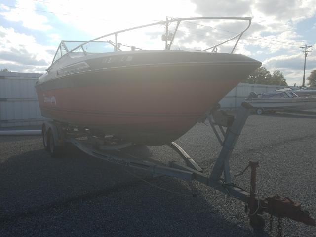 Salvage 1981 Century CORTEZ 230 for sale