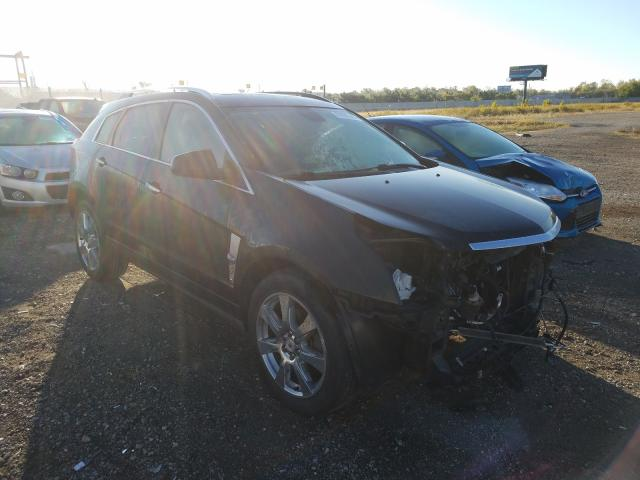Salvage cars for sale from Copart Cicero, IN: 2011 Cadillac SRX Perfor
