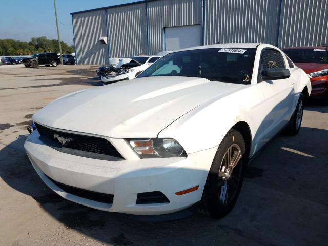 FORD MUSTANG 2011 1