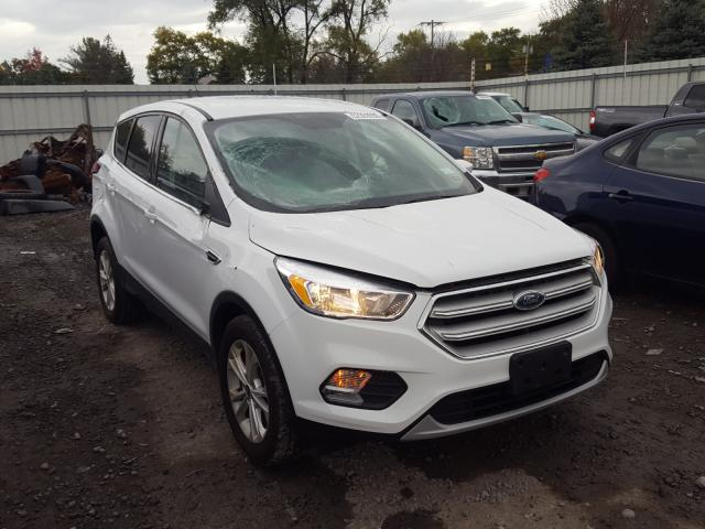 2019 Ford Escape SE for sale in Albany, NY