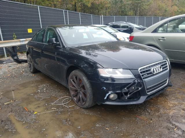 Audi A4 salvage cars for sale: 2009 Audi A4
