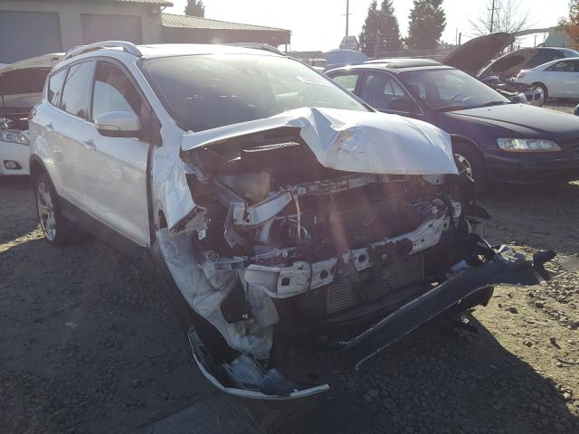 Salvage cars for sale from Copart Eugene, OR: 2019 Ford Escape Titanium