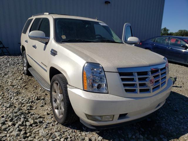 Cadillac Escalade salvage cars for sale: 2009 Cadillac Escalade