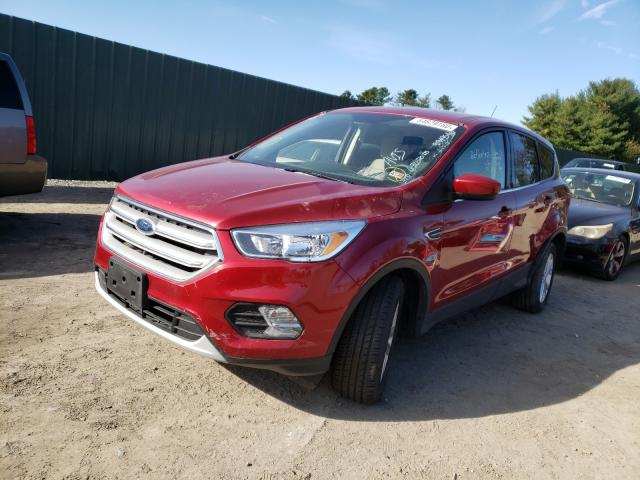 2019 Ford ESCAPE | Vin: 1FMCU0G9XKUB66149