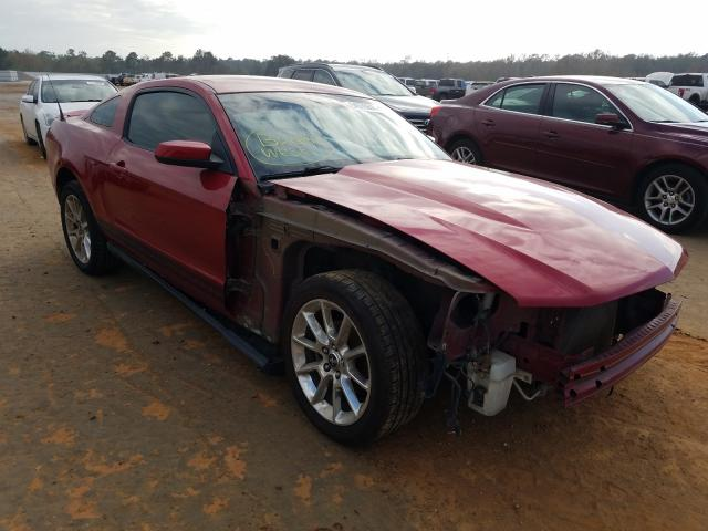 2010 FORD MUSTANG 1ZVBP8AN1A5156384