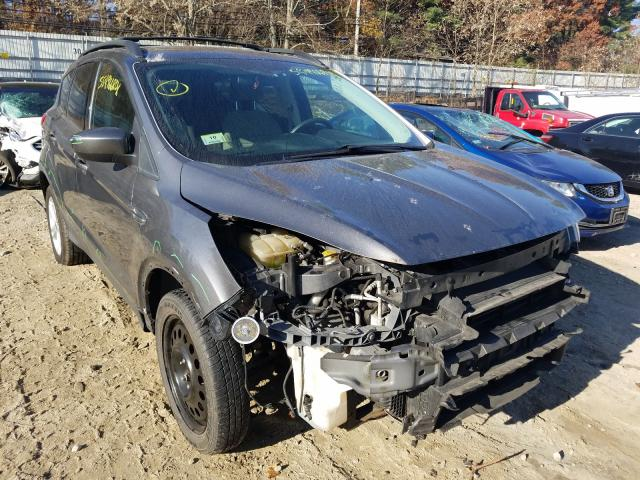 Salvage cars for sale from Copart Mendon, MA: 2013 Ford Escape SE