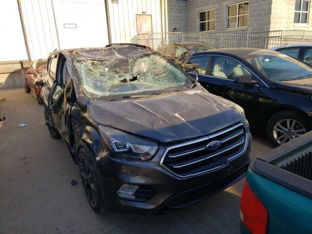 1FMCU0GD4HUC43465-2017-ford-escape