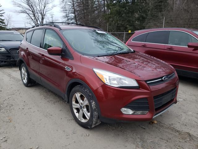2014 FORD ESCAPE SE 1FMCU0GX5EUA36590