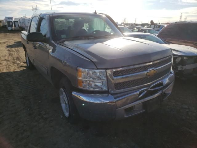 Salvage cars for sale from Copart Billings, MT: 2013 Chevrolet Silverado