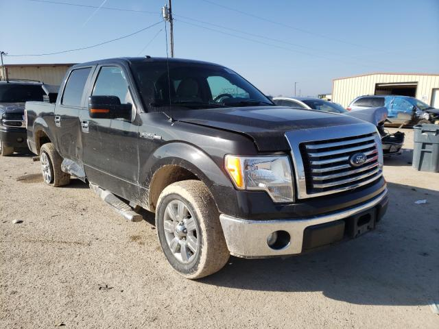Salvage cars for sale from Copart Temple, TX: 2010 Ford F150 Super