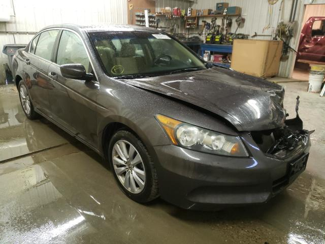 Salvage cars for sale from Copart Avon, MN: 2011 Honda Accord EX