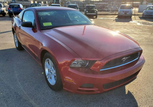 FORD MUSTANG 2013 0