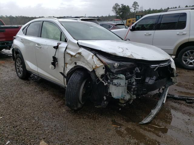 Salvage cars for sale at Harleyville, SC auction: 2019 Lexus NX 300 Base