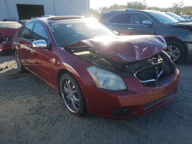 Salvage 2008 NISSAN MAXIMA - Small image. Lot 29769301