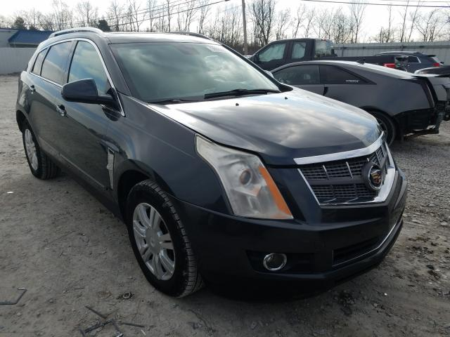 Salvage cars for sale from Copart Walton, KY: 2010 Cadillac SRX