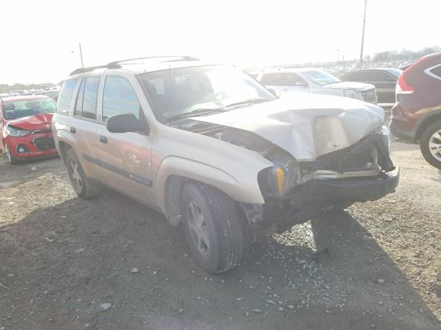 Salvage cars for sale from Copart Indianapolis, IN: 2004 Chevrolet Trailblazer