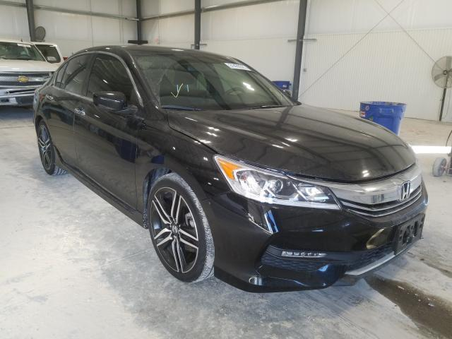 HONDA ACCORD SPO
