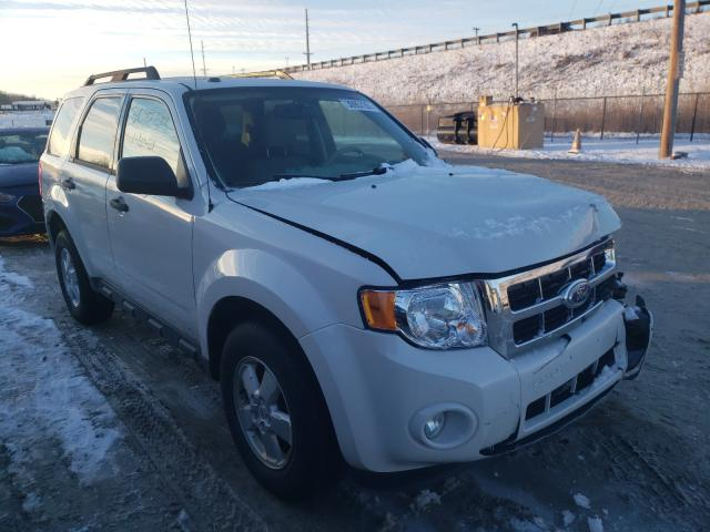2010 FORD ESCAPE XLT 1FMCU0D75AKB52219
