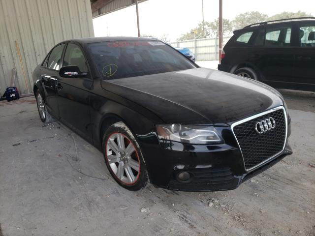 Salvage cars for sale from Copart Homestead, FL: 2010 Audi A4 Premium