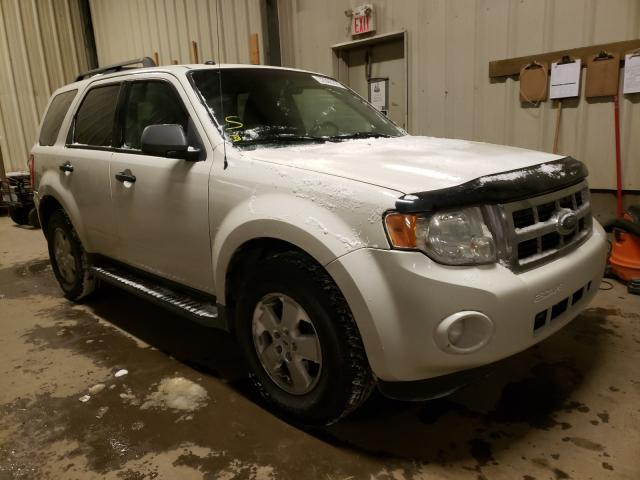Salvage cars for sale from Copart Rocky View County, AB: 2009 Ford Escape XLT