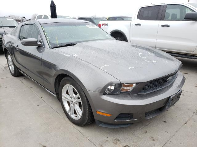 2010 FORD MUSTANG 1ZVBP8AN9A5157766