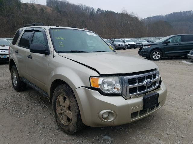 2010 FORD ESCAPE XLT - Other View