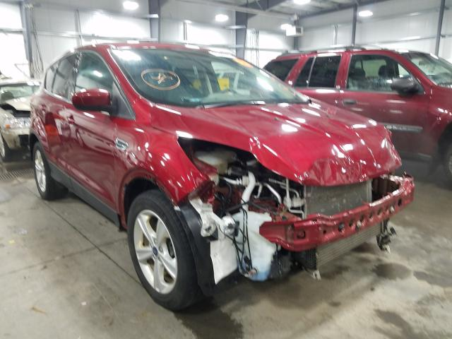 Salvage cars for sale from Copart Ham Lake, MN: 2016 Ford Escape SE