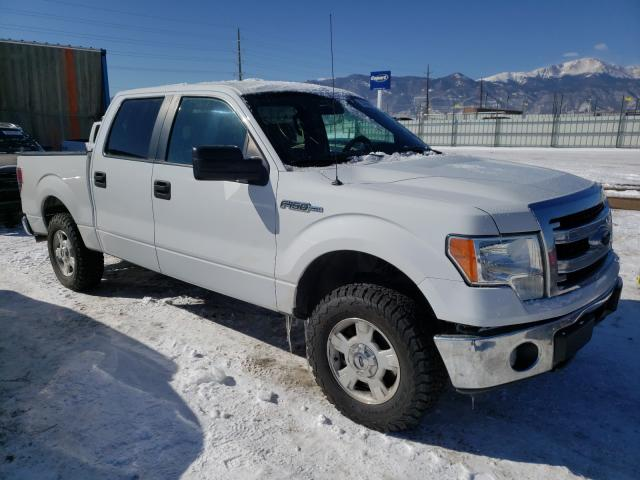 Salvage 2014 FORD F-150 - Small image. Lot 33854801