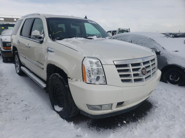 Salvage cars for sale from Copart Rocky View County, AB: 2007 Cadillac Escalade L