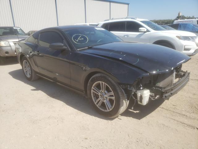 2013 FORD MUSTANG 1ZVBP8AM4D5213513