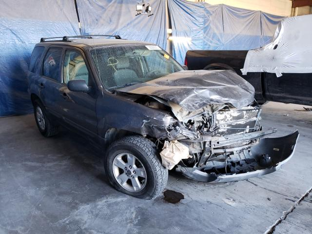 Salvage cars for sale from Copart Anthony, TX: 2006 Ford Escape XLT