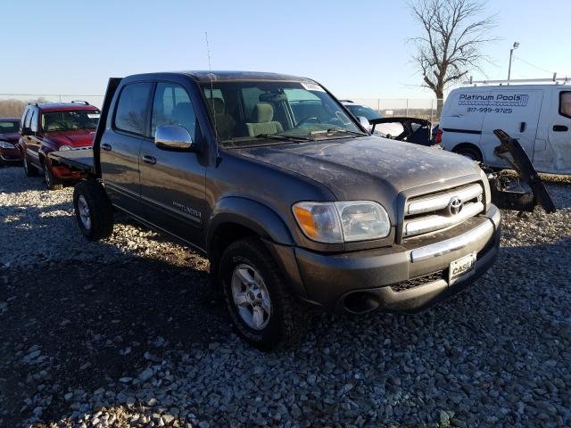 Salvage cars for sale from Copart Cicero, IN: 2005 Toyota Tundra DOU