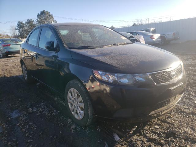 Salvage cars for sale from Copart Albany, NY: 2013 KIA Forte EX