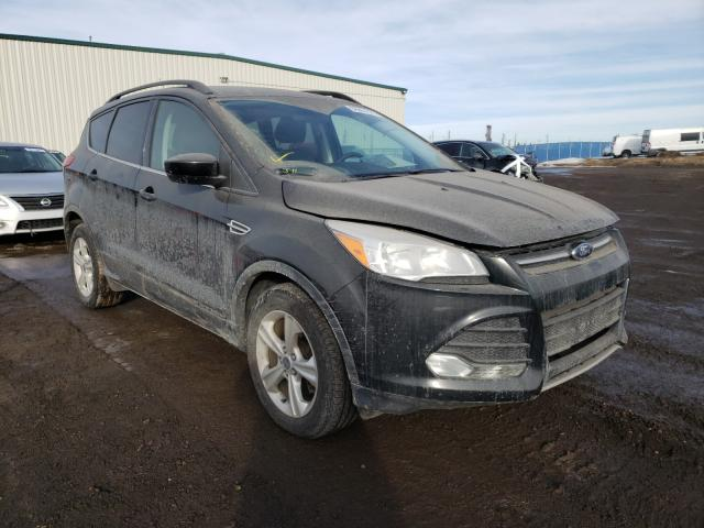 Salvage cars for sale from Copart Rocky View County, AB: 2014 Ford Escape SE