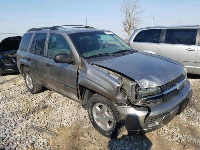 Salvage cars for sale from Copart Cicero, IN: 2002 Chevrolet Trailblazer