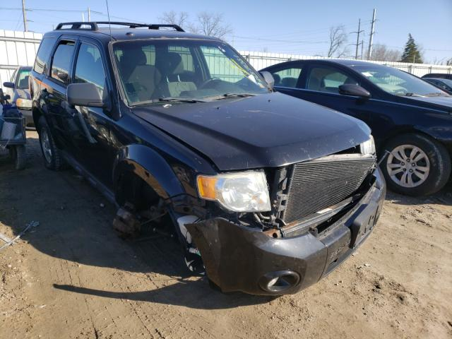 Ford Vehiculos salvage en venta: 2010 Ford Escape XLT