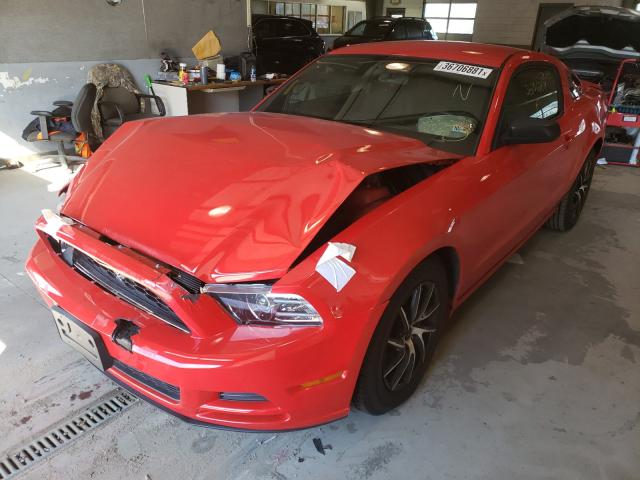 2013 FORD MUSTANG 1ZVBP8AM7D5200514