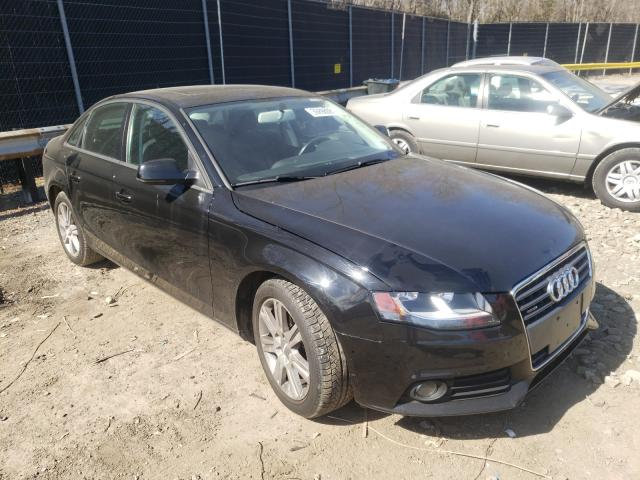 Salvage cars for sale from Copart Waldorf, MD: 2010 Audi A4 Premium